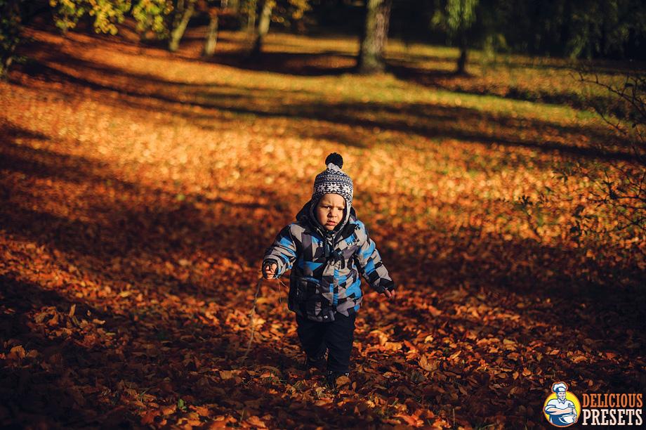Boy's autumn portrait - Lightroom 4 RAW Presets