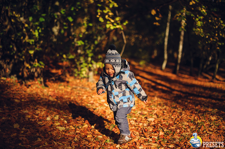 Lightroom 4 Presets for autumn photography