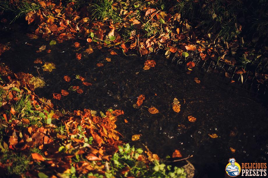 Lightroom 4 Presets for Landscape Autumn Photography