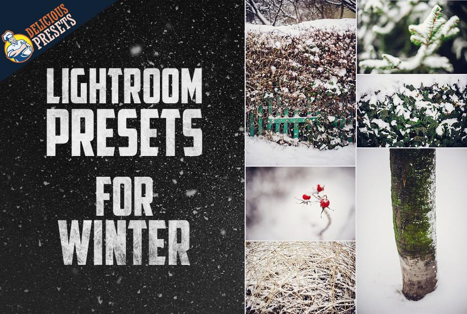 Lightroom Presets for Winter