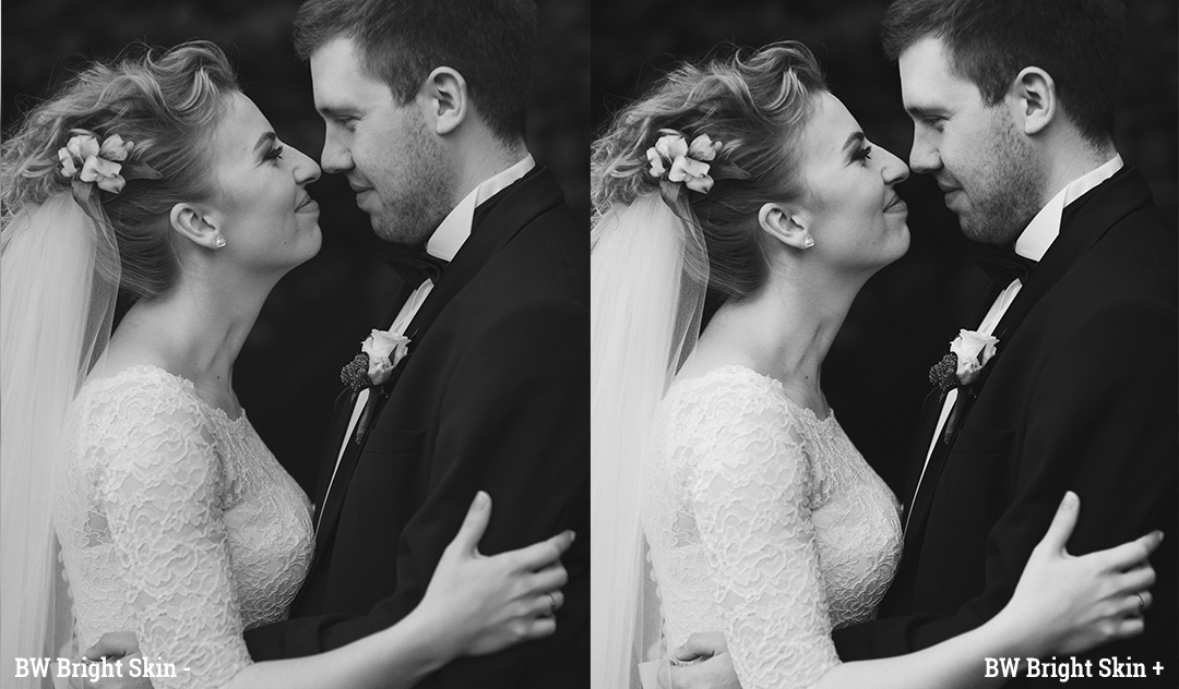 Two contrast options in Lightroom and Adobe Camera RAW Presets by Delicious Presets