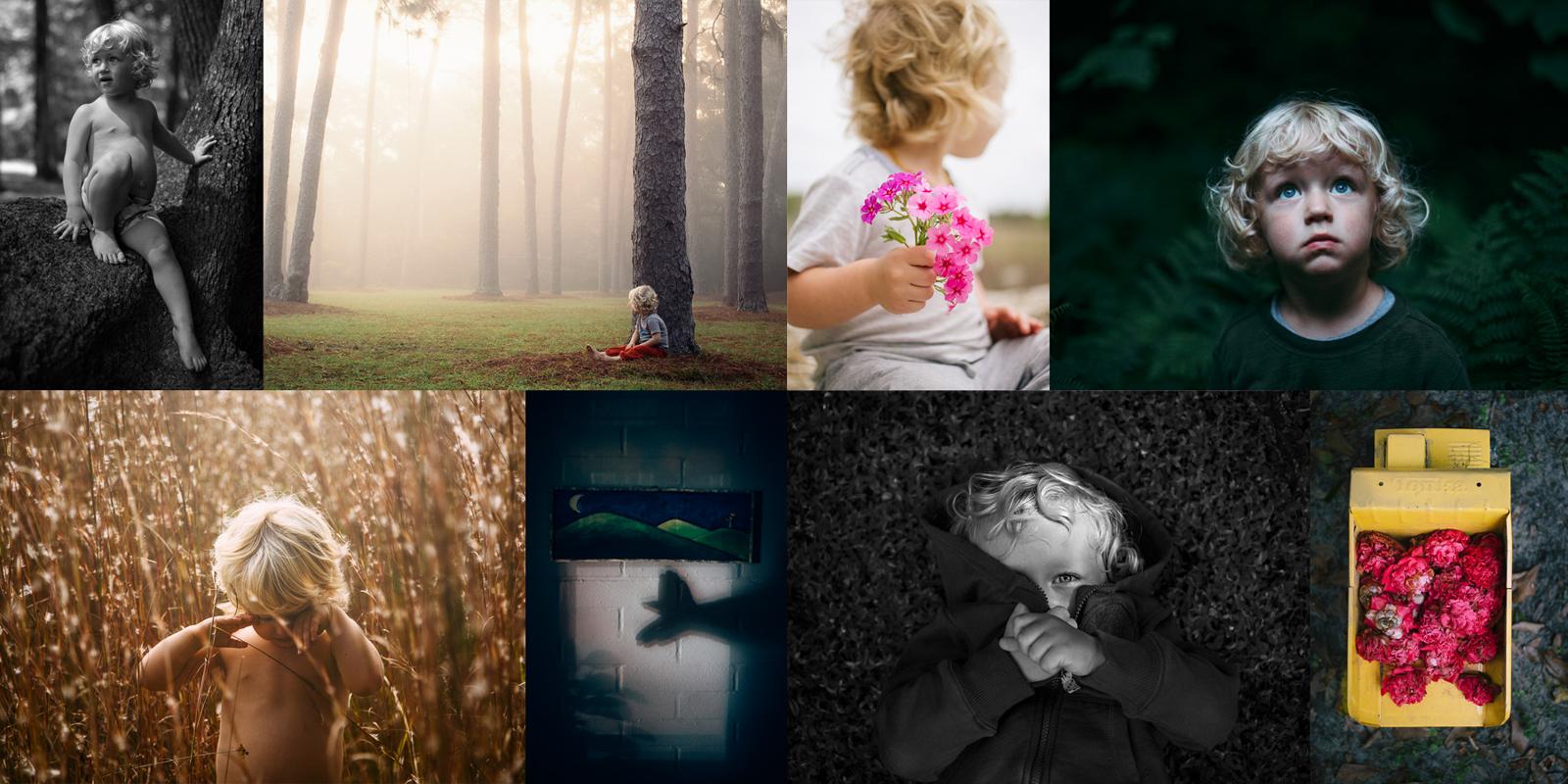 Amanda O'Donoughue Photography